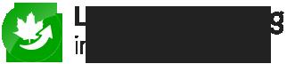 Laubbeseitigung Solingen | Gelford GmbH